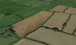 Furzehill, Lunnon